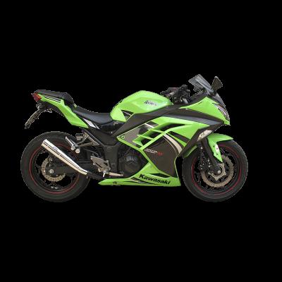 Veja todos os produtos em Ninja 300